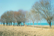 Земельный участок у моря 1 Га
